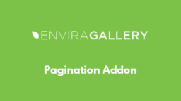 Pagination Addon