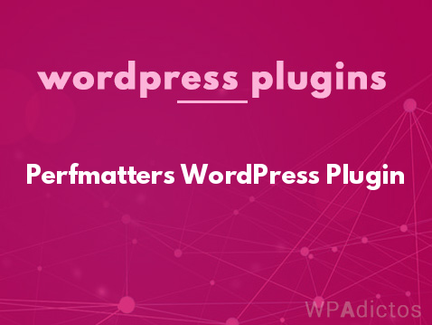 Perfmatters WordPress Plugin