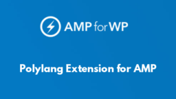 Polylang Extension for AMP