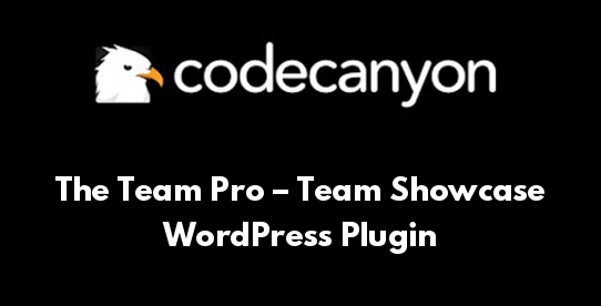 The Team Pro – Team Showcase WordPress Plugin